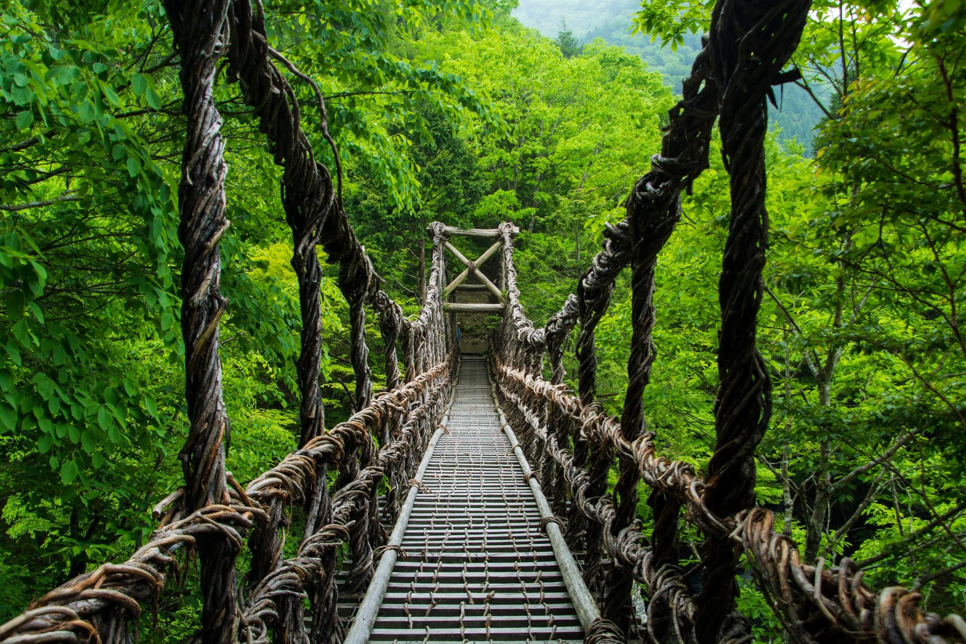 Woven bridge in Shikoku Japan