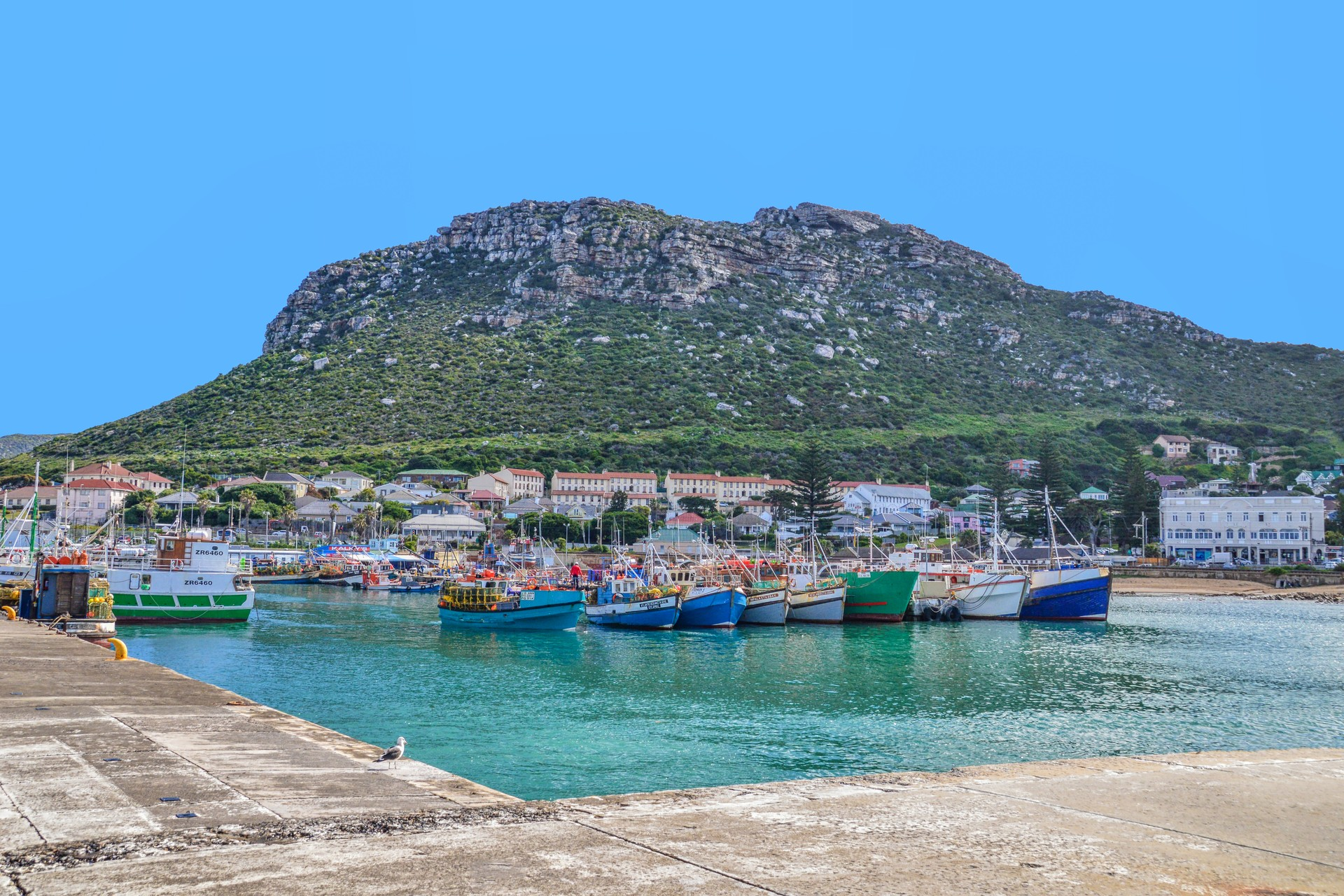 Boats in Kalk Bay Harbour in Cape Town