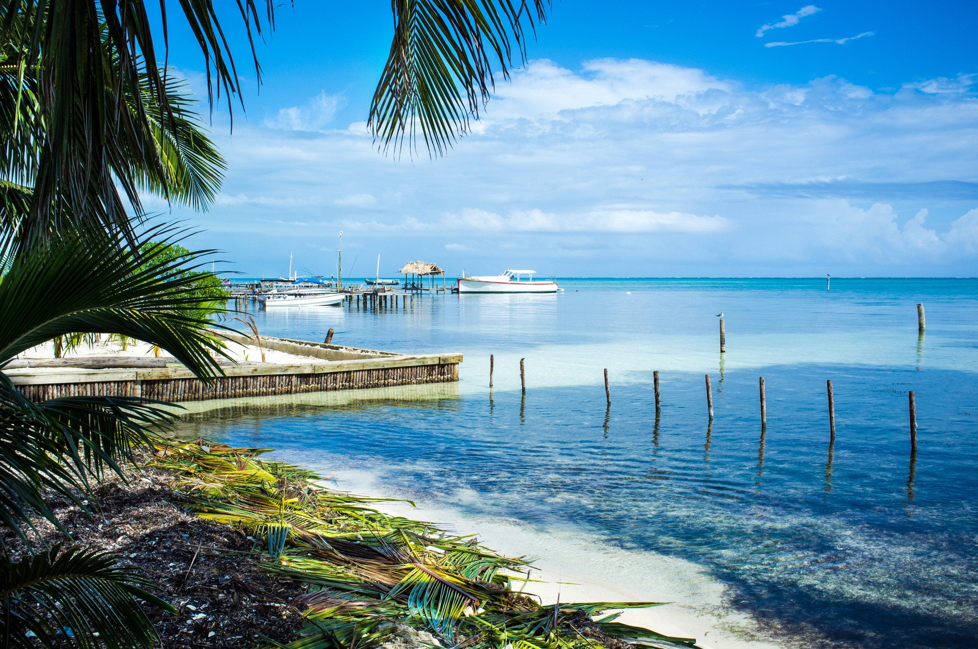 The best places to wild swimming: Caye Caulker