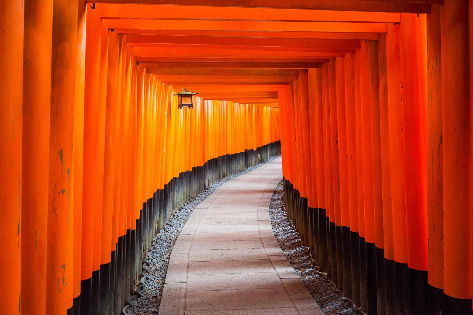 The orange torii gates of the Fushimi-Inari Shrine in Kyoto