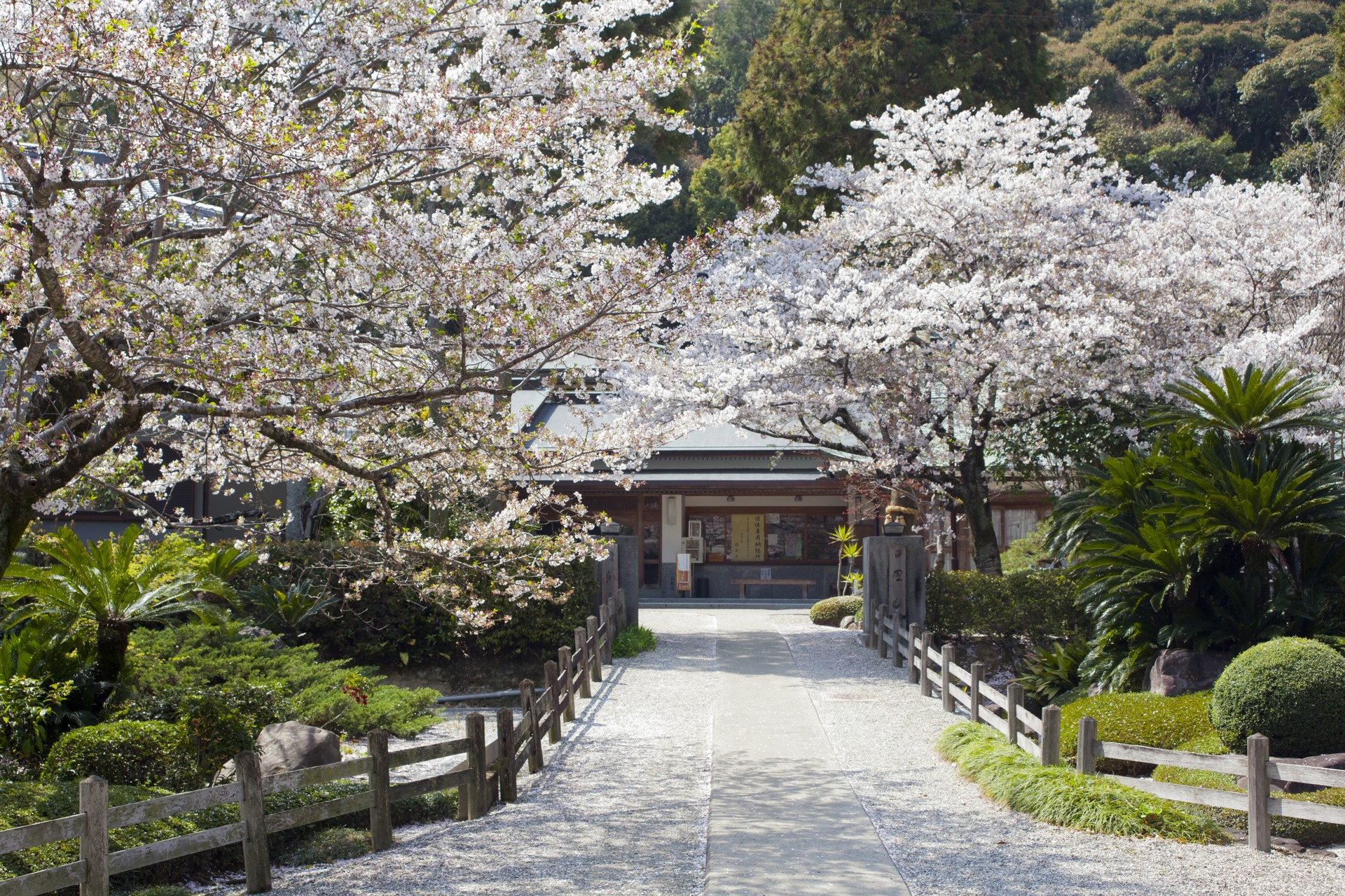Temple on Shikoku pilgrimage route