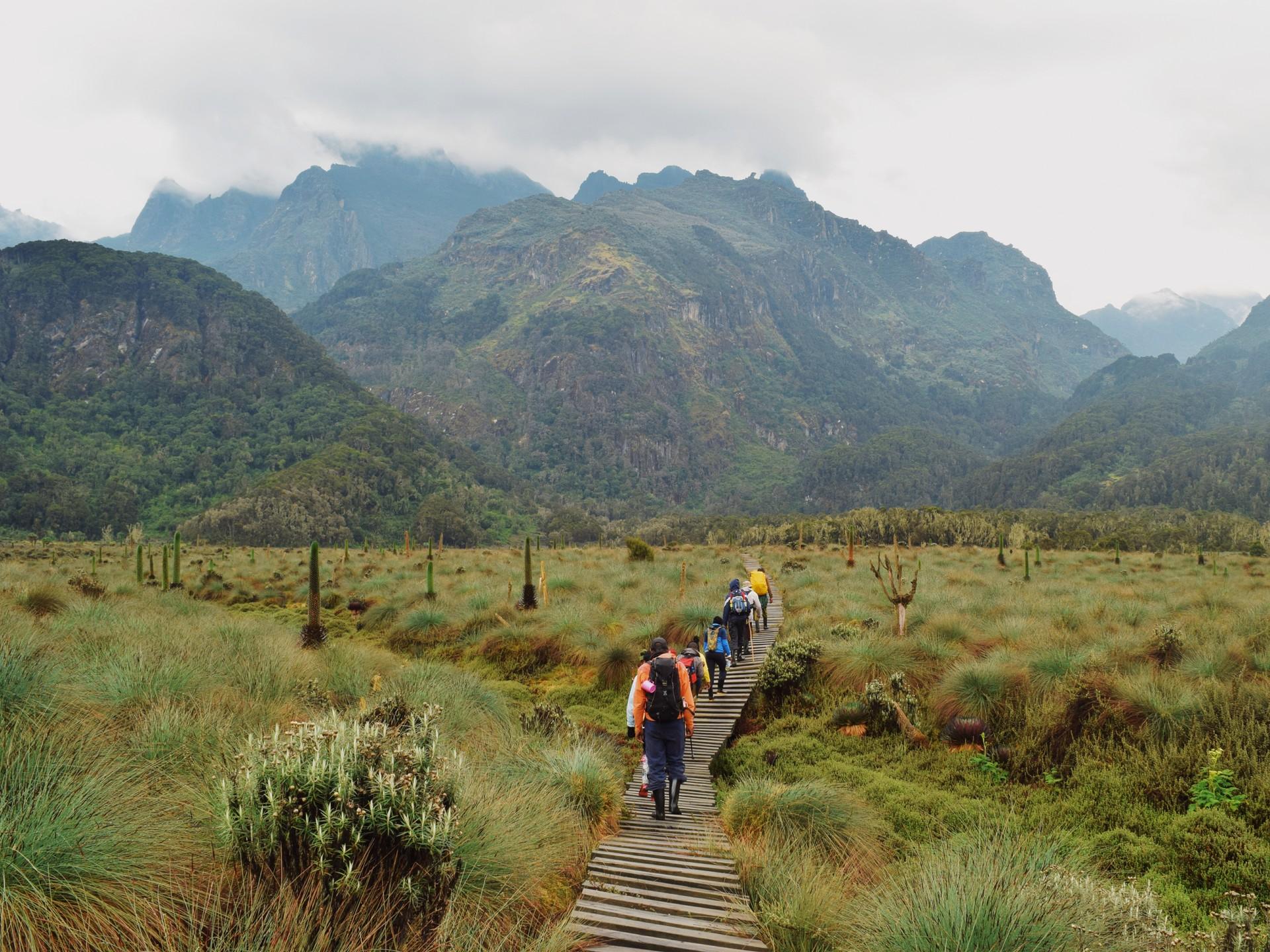 Best of both worlds: Rwenzori Mountains National Park