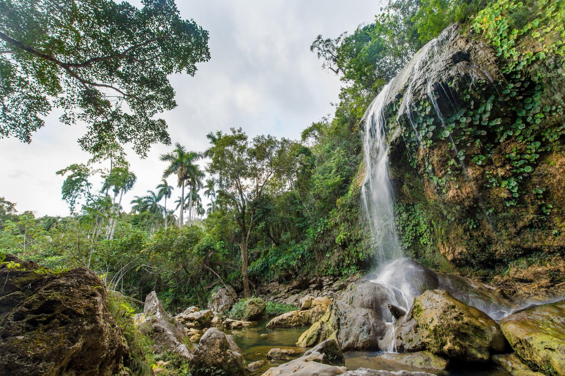 A waterfall in the Sierra del Rosario Biosphere Reserve