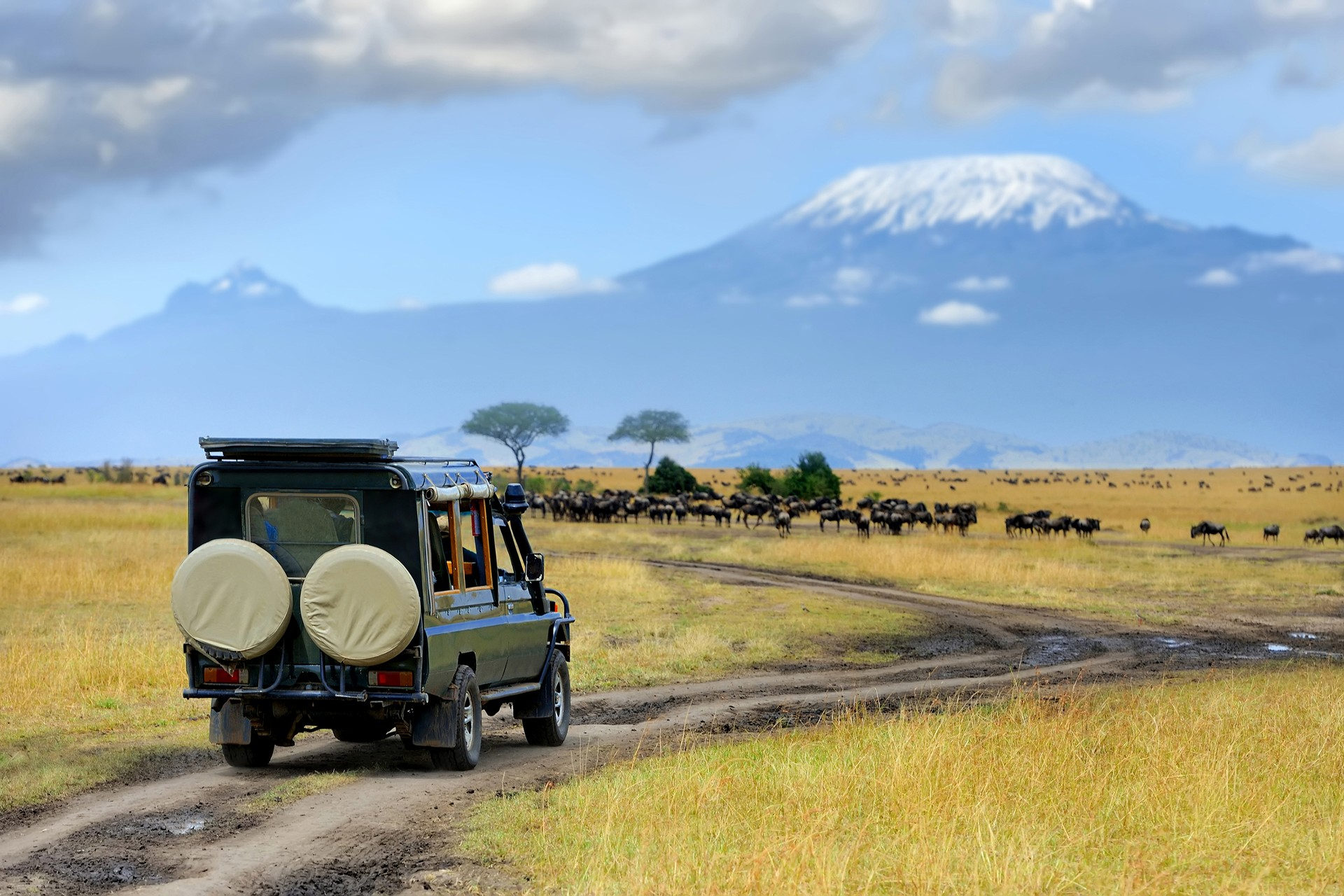 Game drive vehicle in Amboseli National Park