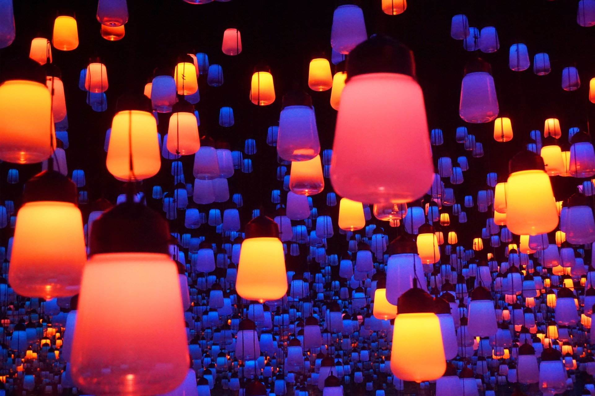 Bright lights at the immersive Digital Art Museum in Tokyo