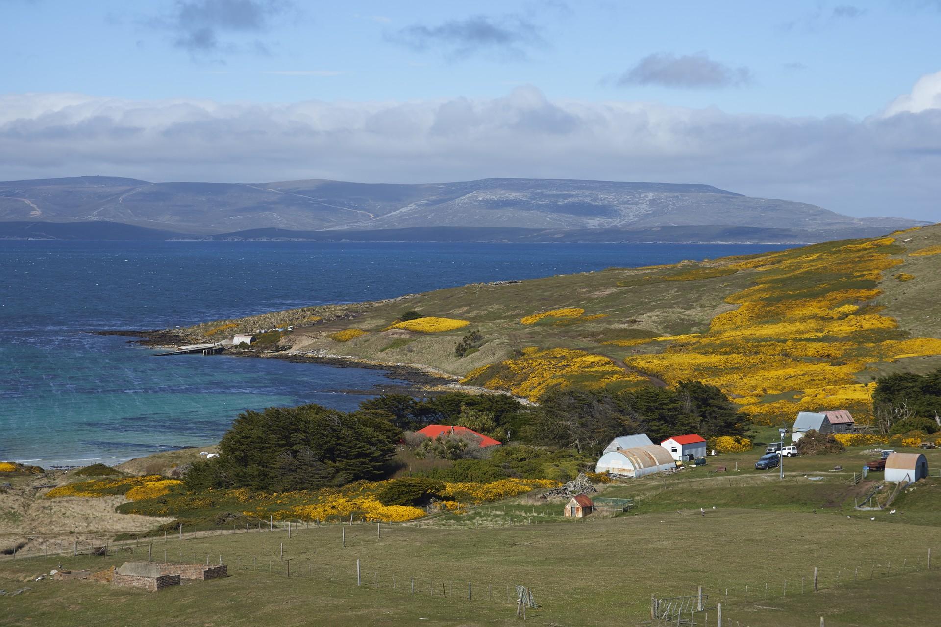 Farm on Carcass Island, Falklands