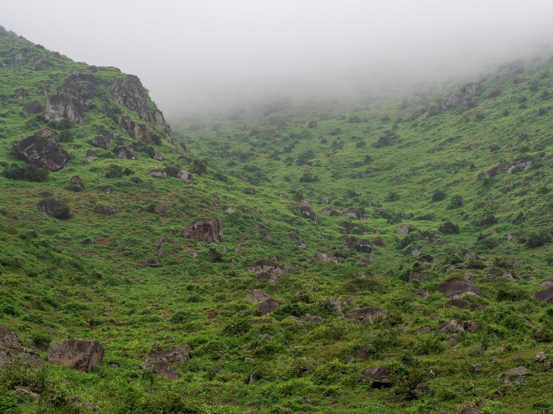 The misty hills of Lomas de Lucumo jut outside of Lima