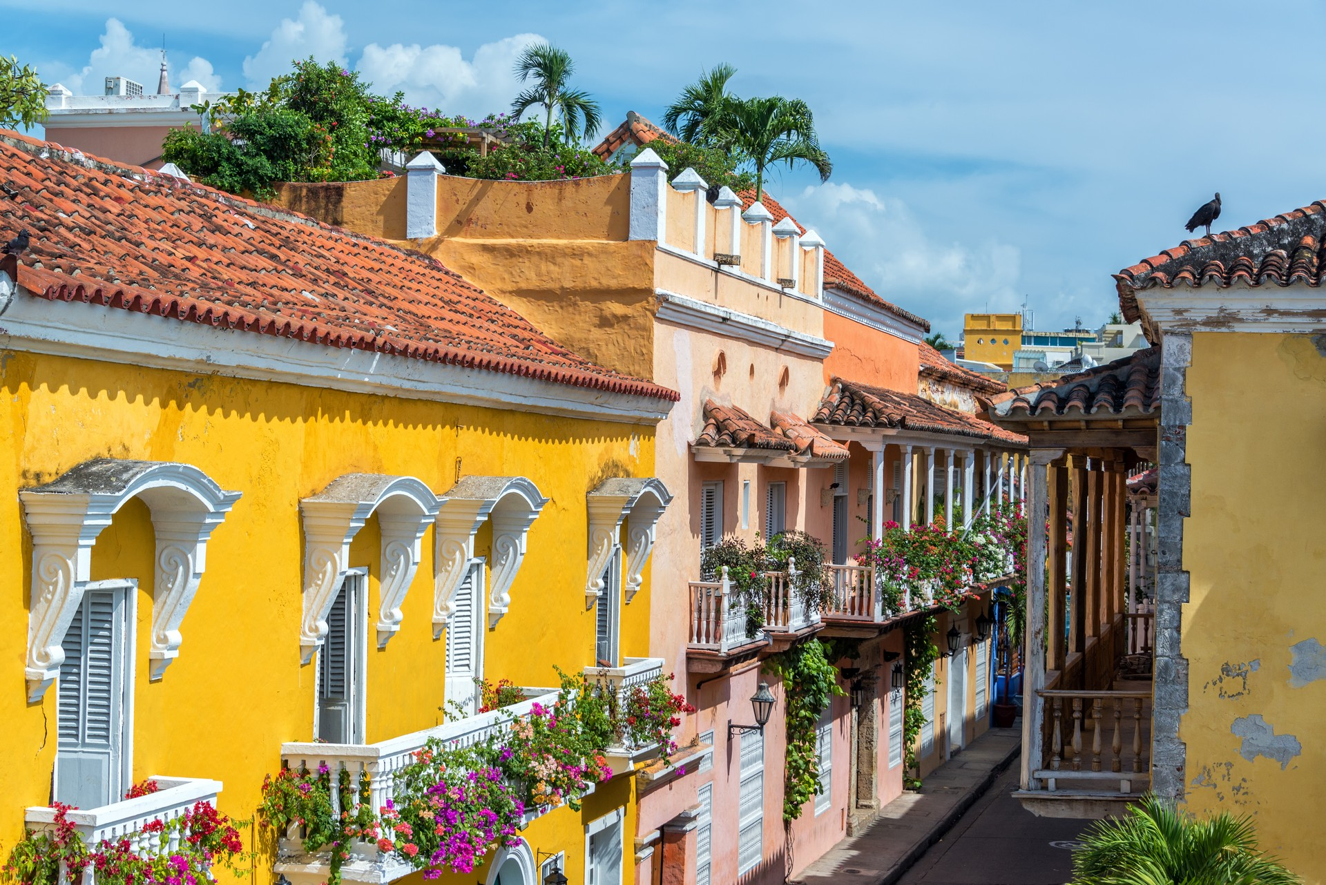 Colourful and colonial Cartagena Colombia