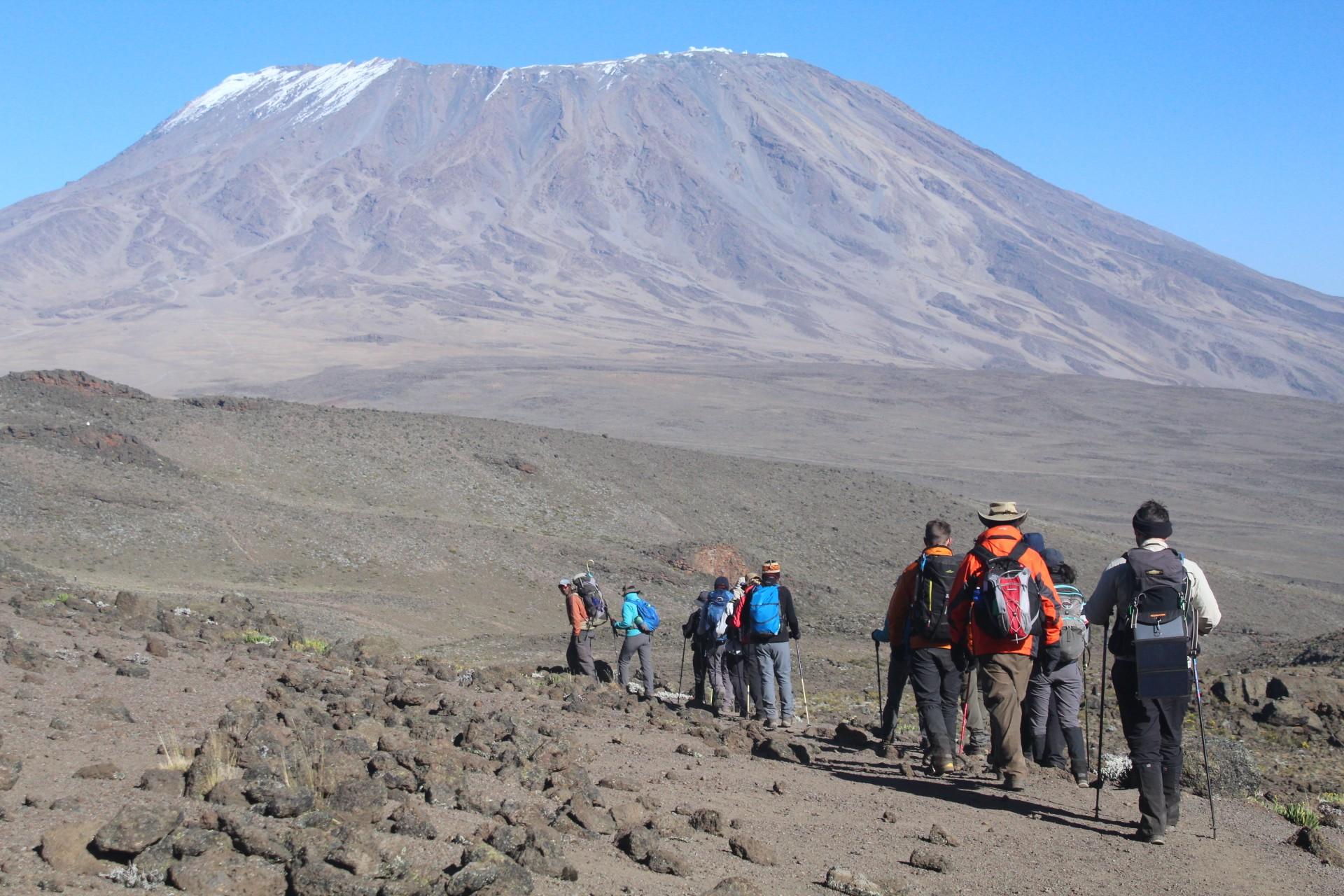 A trekking group on their way up Mount Kilimanjaro