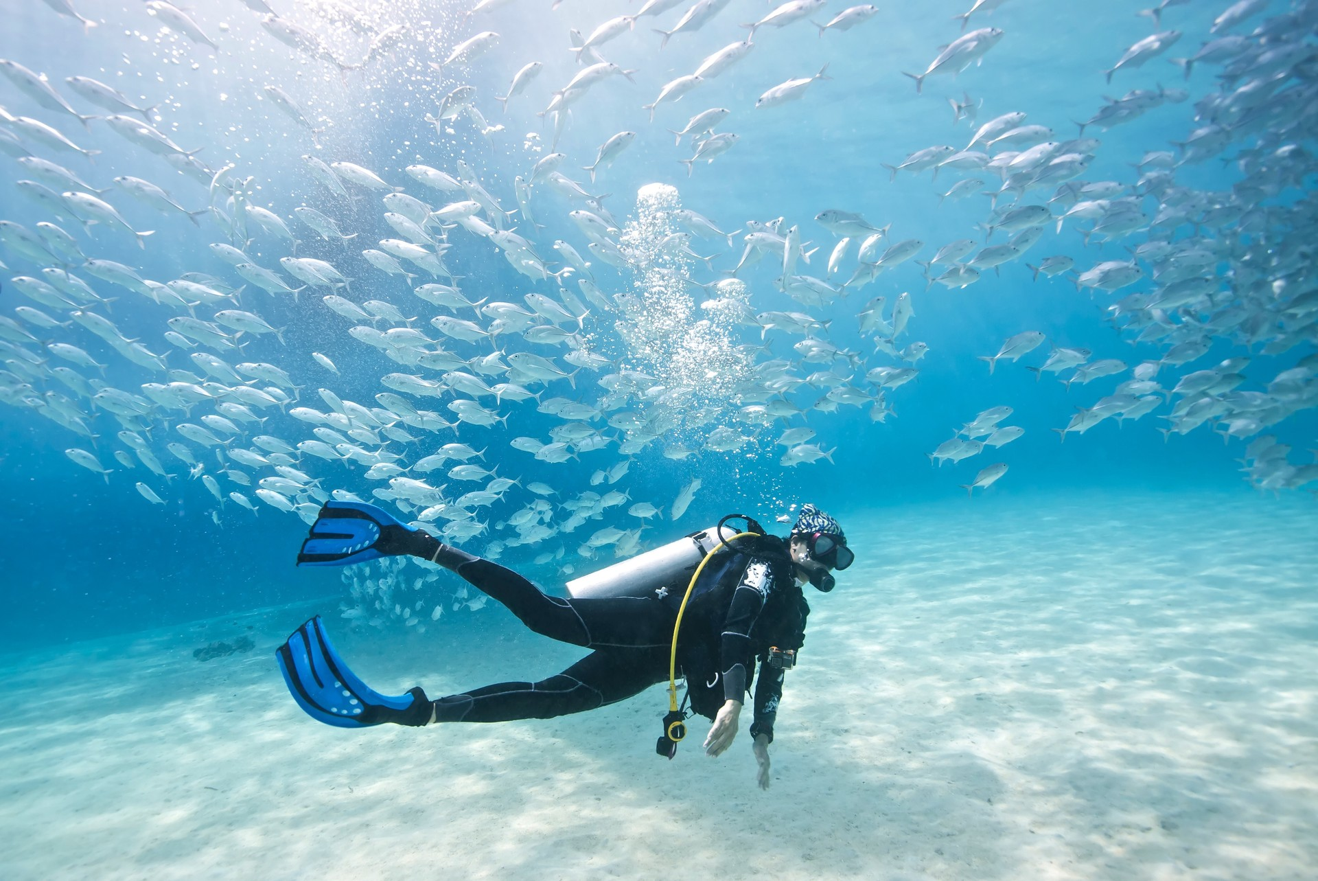 Diving in Palawan in the Philippines
