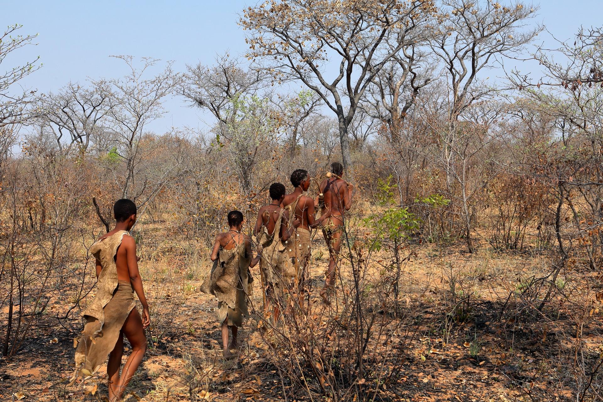 San Bushmen in the Kalahari Desert in Botswana
