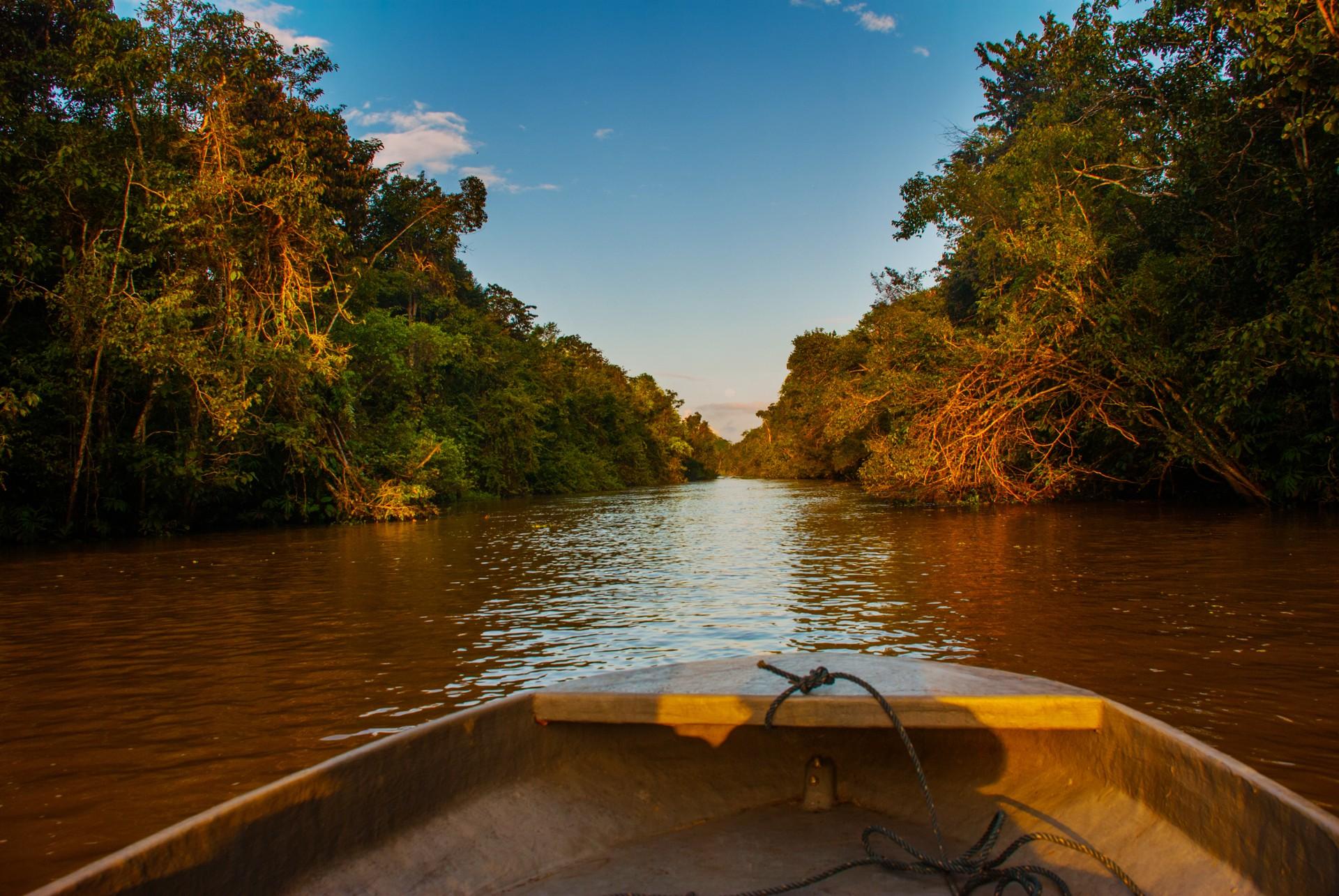 Top 1 scenic journeys: Kinabatangan river