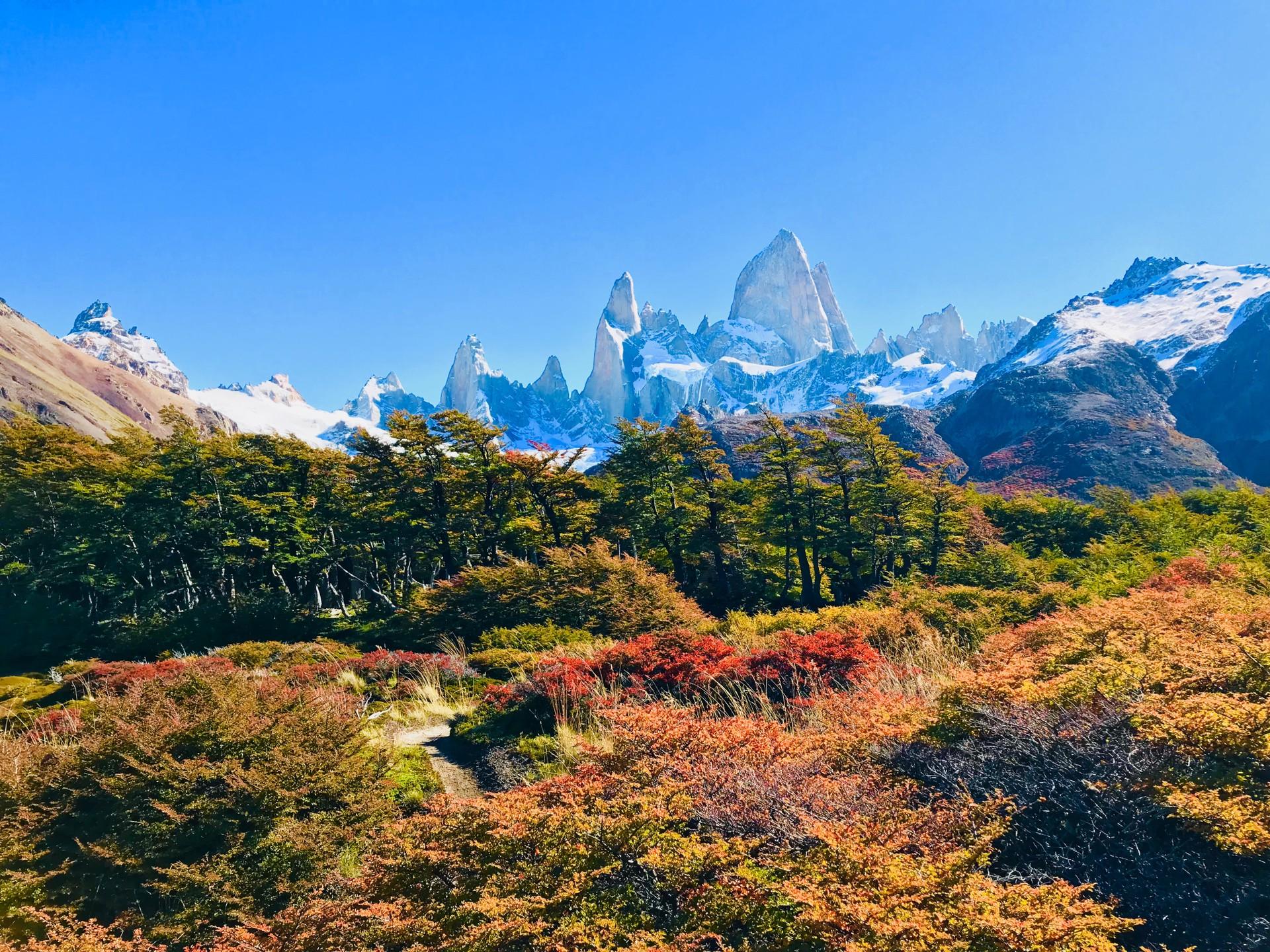 Landscape of Torres del Paine Patagonia