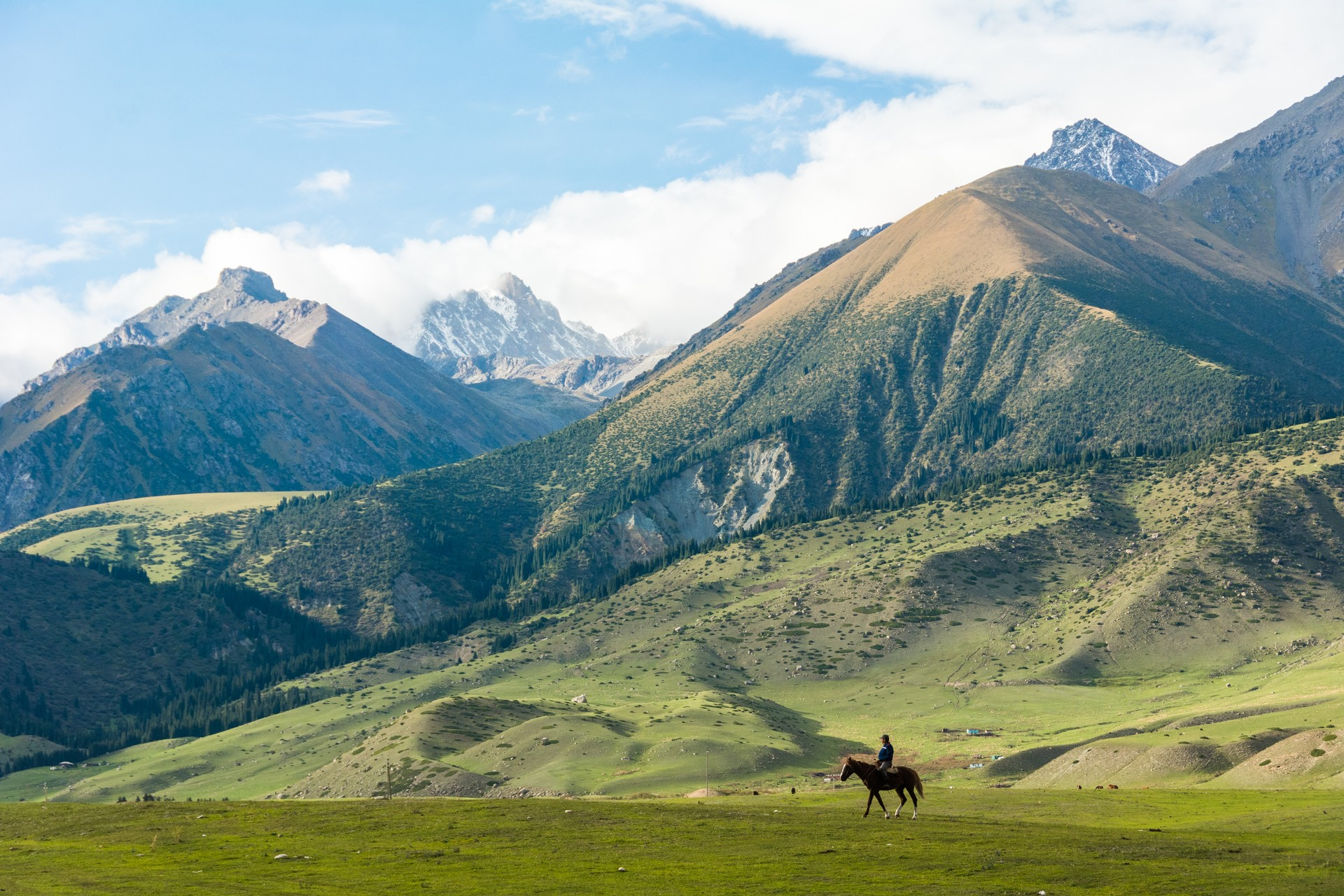 Rider in front of the Tien Shan mountains, Kyrgyzstan