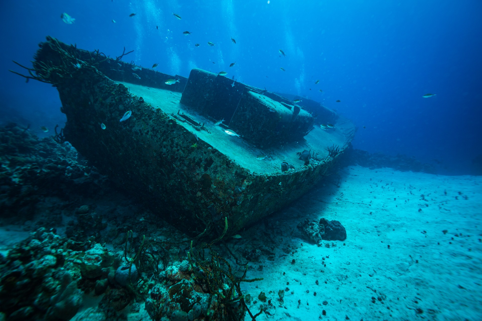 The purpose sunk ship found in Cuba's Bay of Pigs