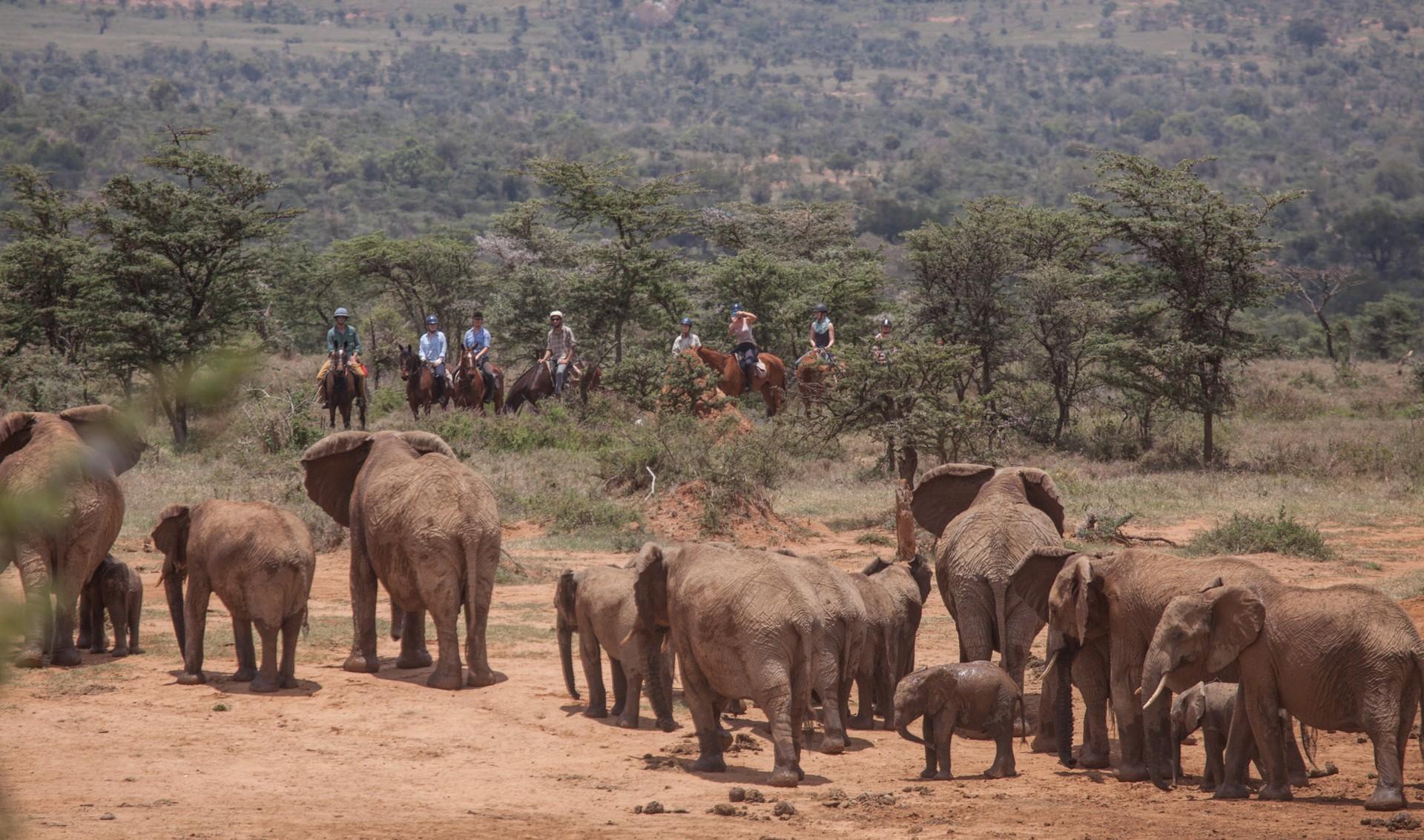 horseback safari in El Karama reserve