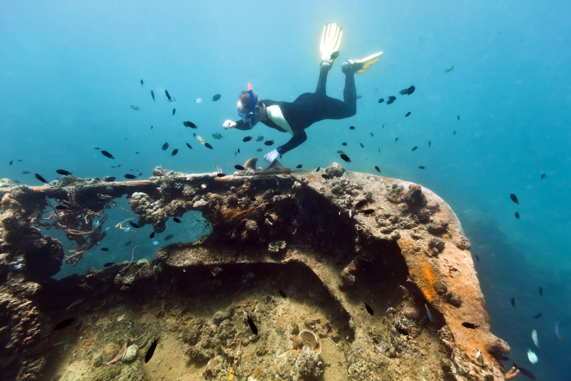 Snorkelling WW2 wreck in Coron, Philippines