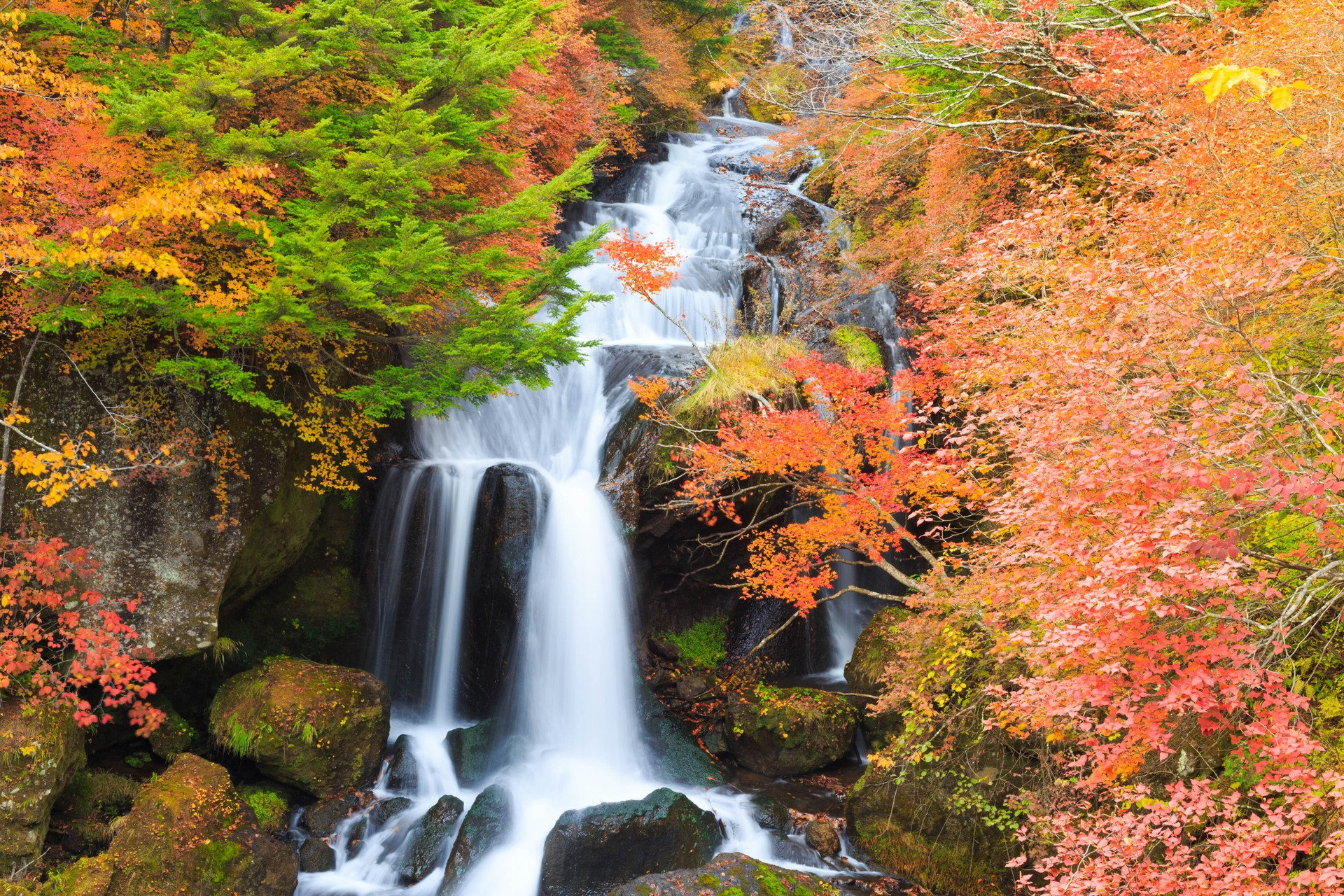 Autumn in rural Japan