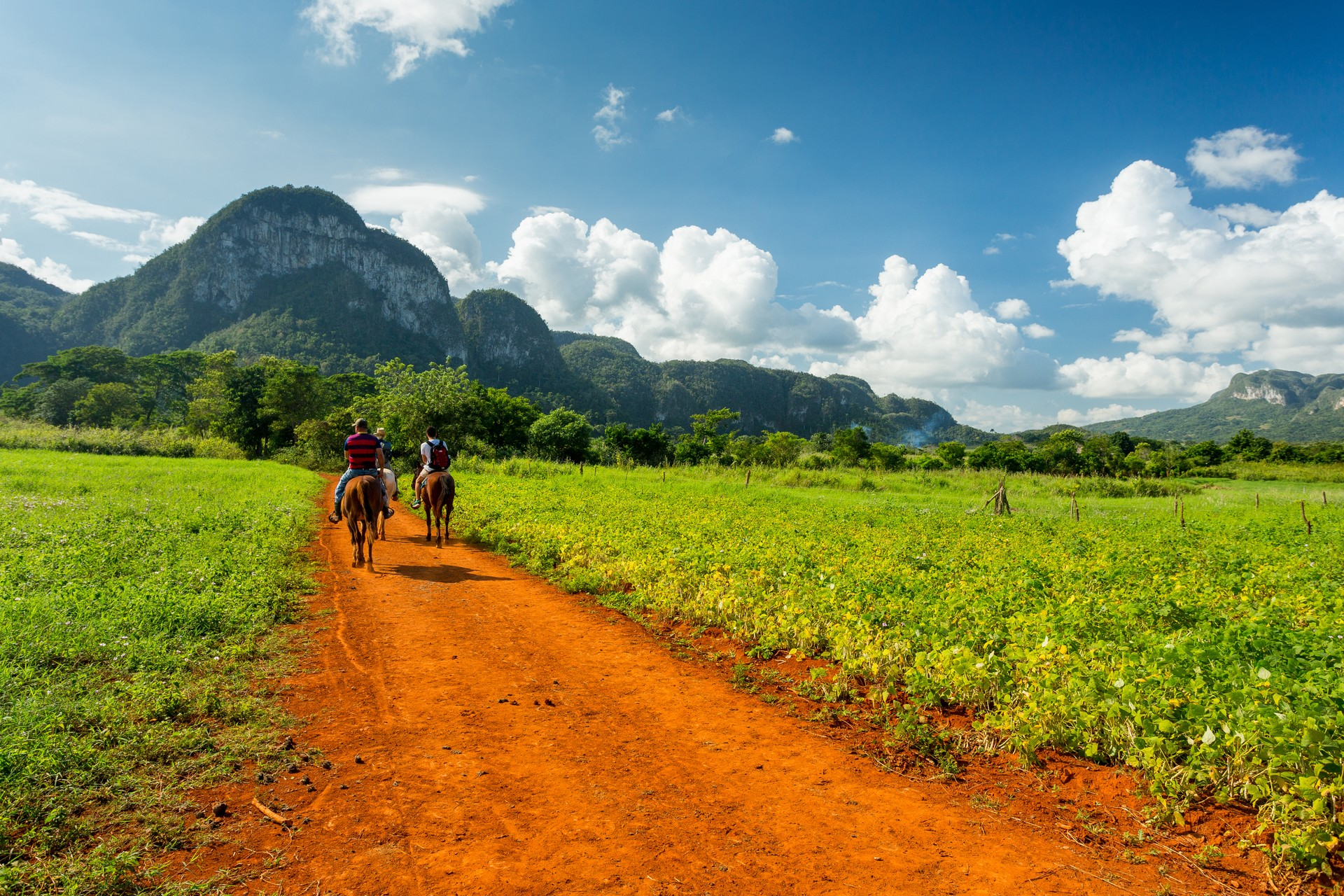 The Viñales Valley is a great destination for older children