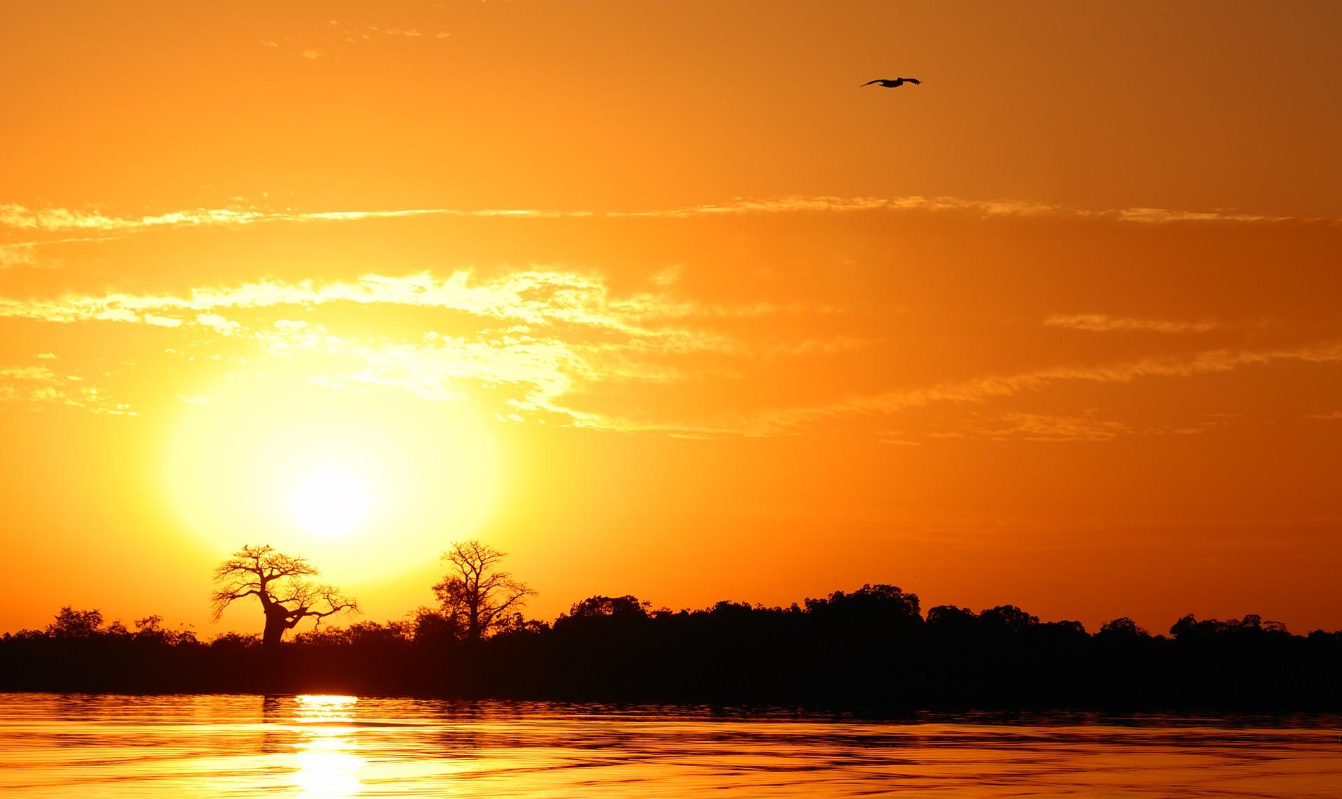 Sunset in Sine Saloum Delta, Senegal