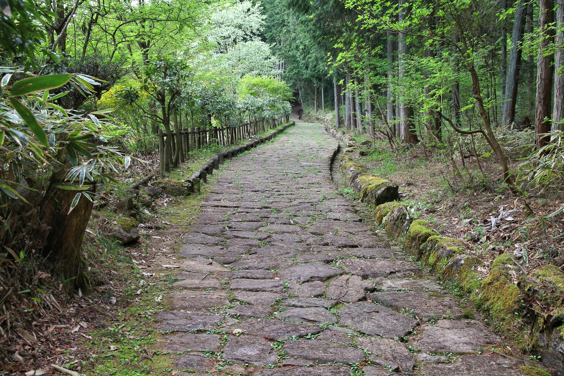 Road on the Nakasendo Trail Japan