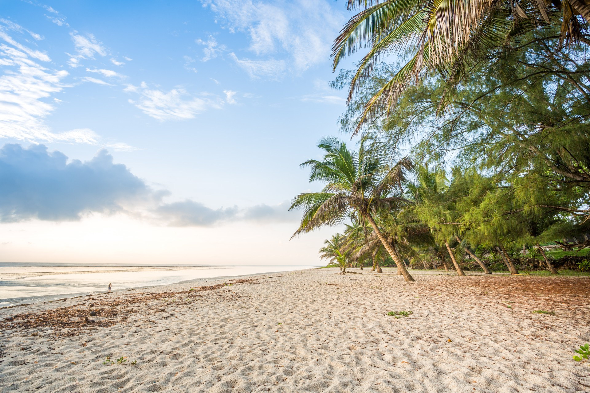 Diani Beach is situated 30 km south of Mombasa in Kenya