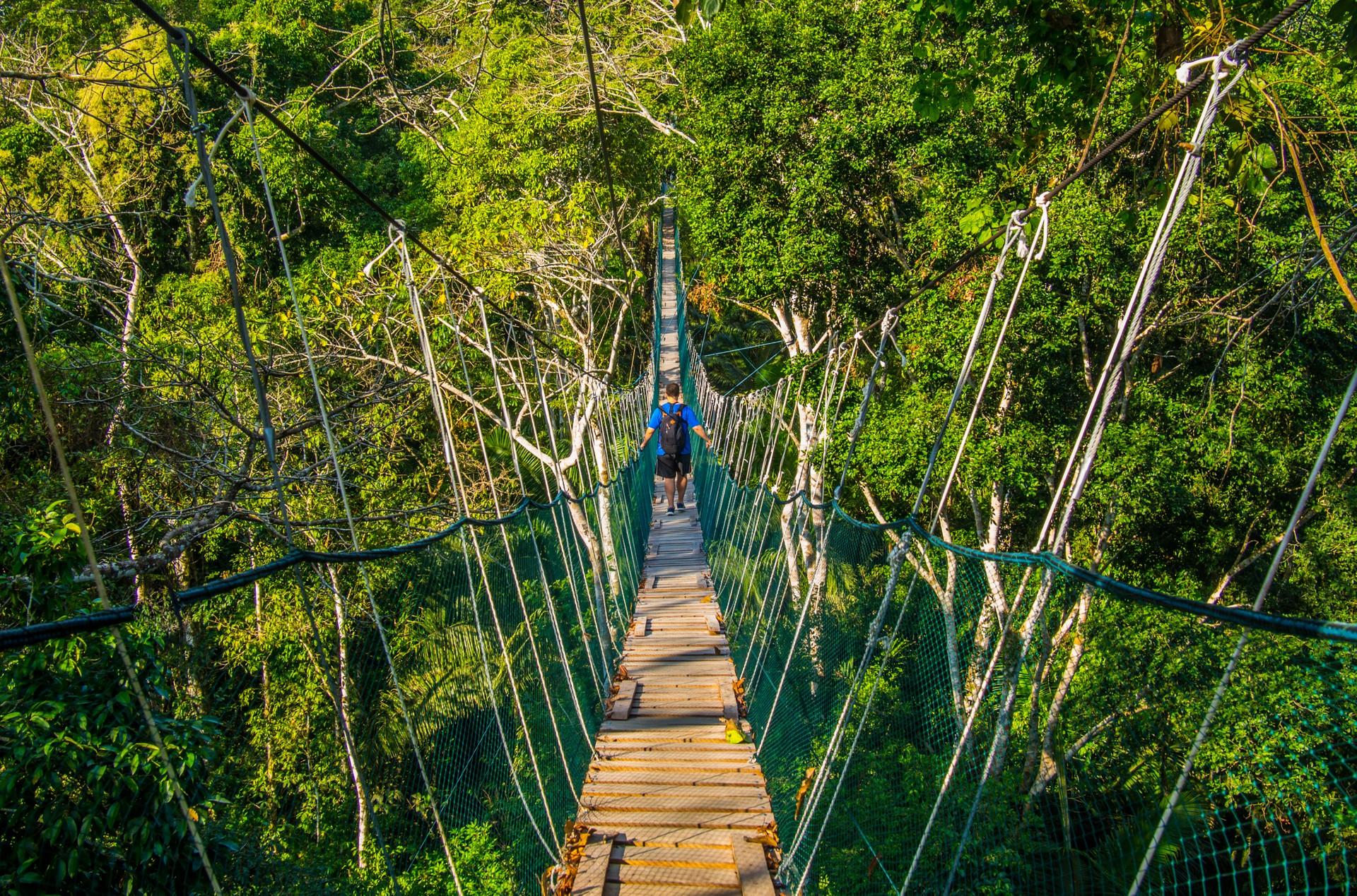 A man walking across a jungle bridge in Peru's Amazon region