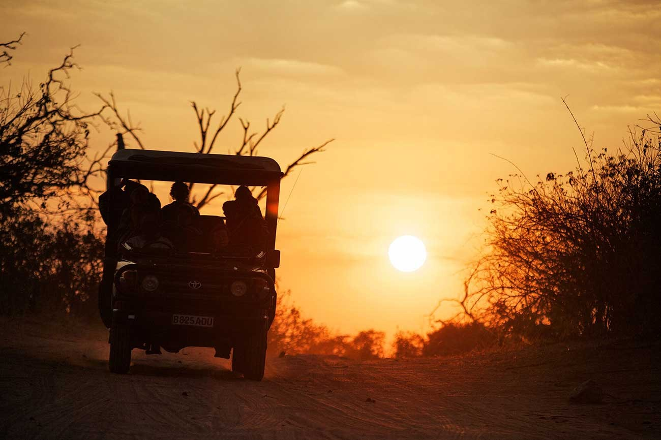 A game drive at sunset in Chobe National Park, Botswana