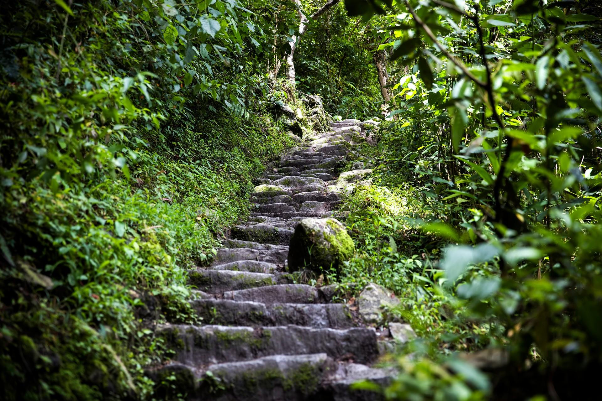 The steps of the Inca Trail to Machu Picchu in Peru