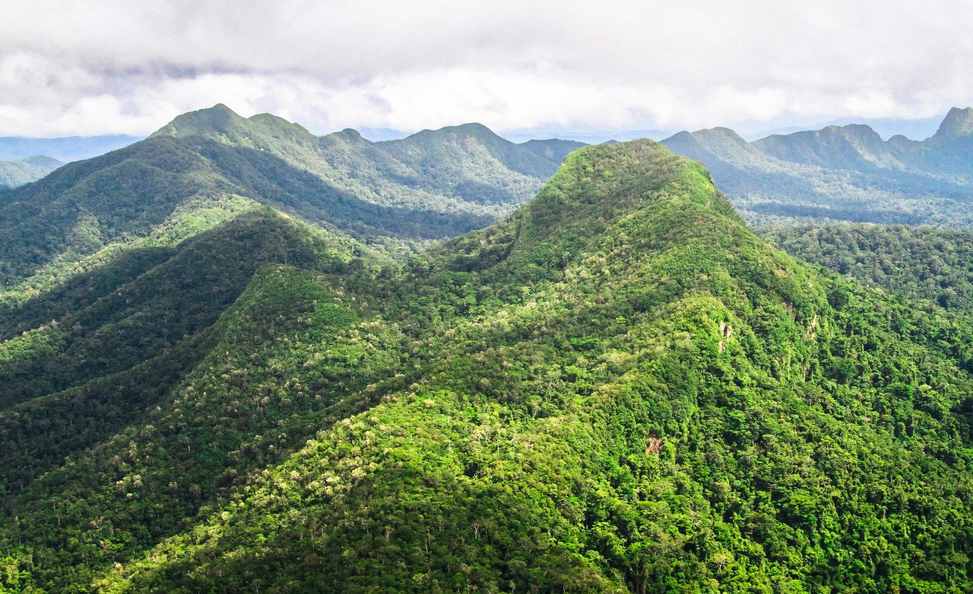 The Maya Mountains of Belize