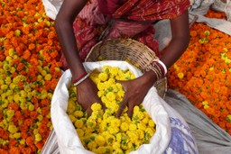 Woman selling flowers in India