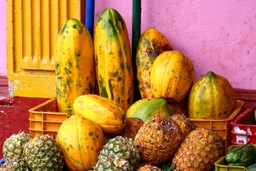 Fruit for sale in Nicaragua