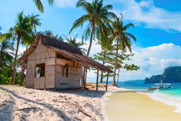 Hut on the shore in the Philippines