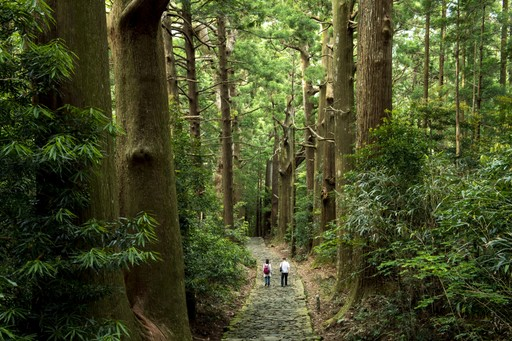 Kumano Kodo trail, Japan