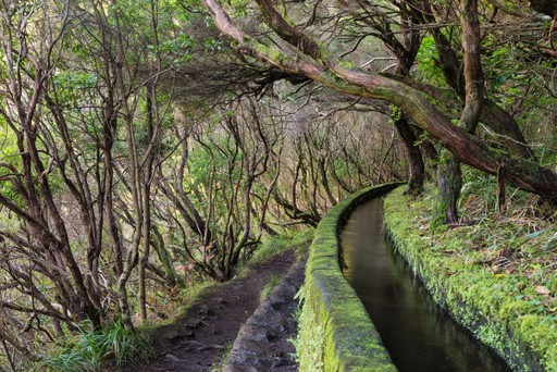 Levadas hiking trail Madeira