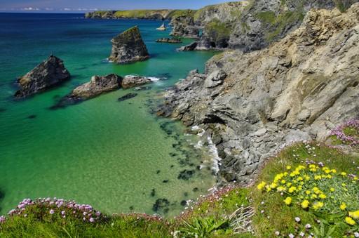 Cornwall in summer