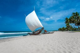Traditional boat on Sri Lankan beach