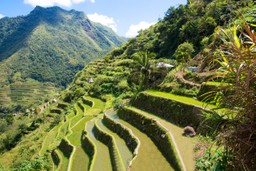 Banau rice terraces in the Philippines