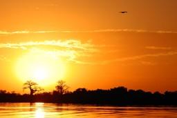 Sine Saloum Delta at sunset