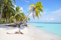 Tropical beach in San Blas, Panama