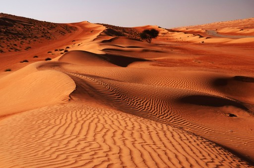 The Wahiba Sands in Oman