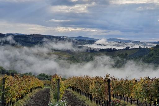 Mist in chianti, Italy