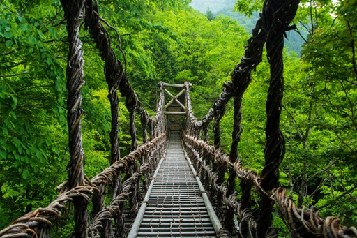 Woven bridge of Shikoku Japan