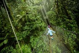 Canopy walk, Costa Rica