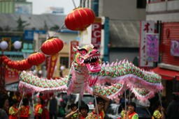 Chinese dragon in festival
