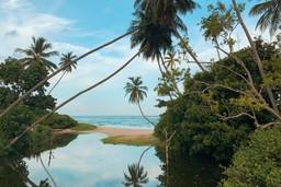 Sri Lanka's beautiful coastline