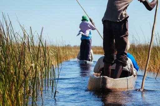 Okavango Delta Canoeing