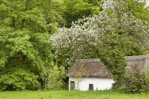 Wales holidays: St Fagans National History Museum