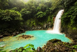 Rio Celeste Waterfall in Volcan Tenorio National Park, Costa Rica