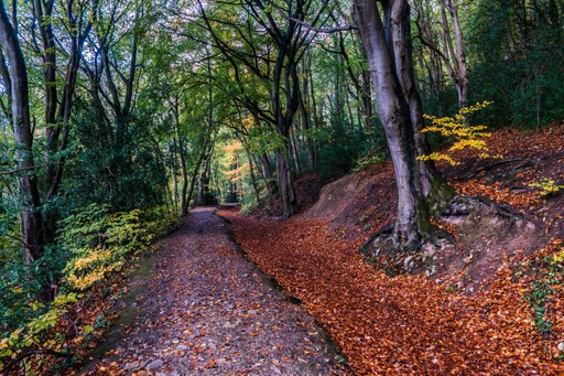Wales holidays: Offas Dyke path